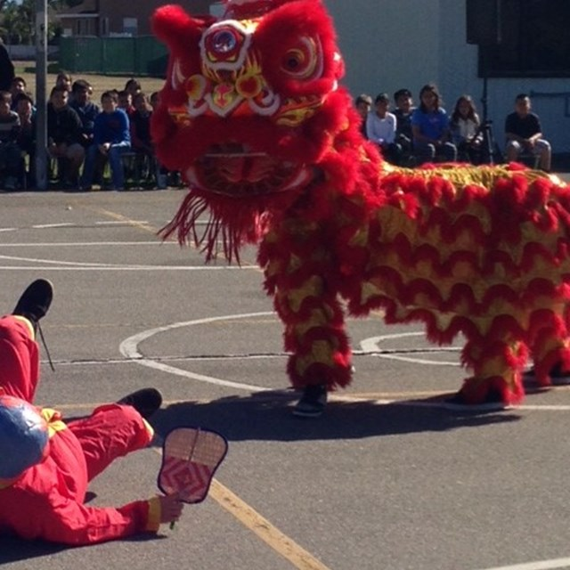 Students are entertained by dragon dancers during the school's cultural assembly!