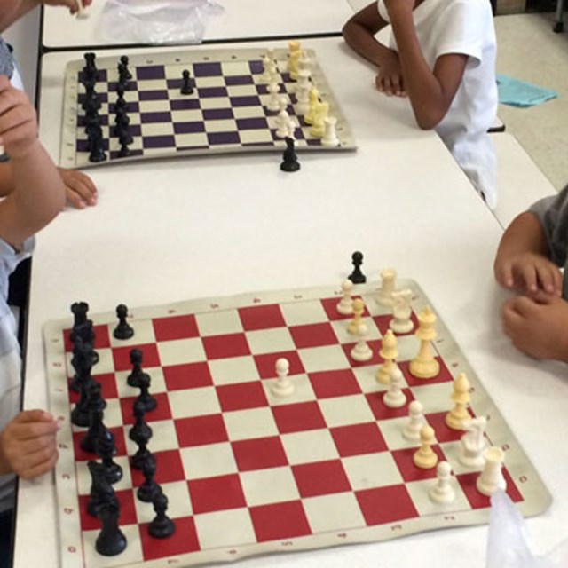 Our tigers develop strategic skills during a game of chess.
