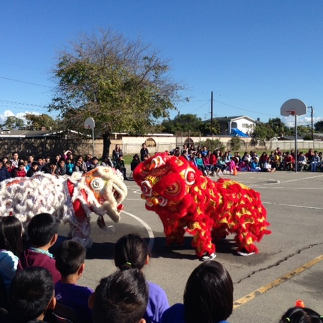 Our dragon dance shows students the significance of Vietnamese traditions.